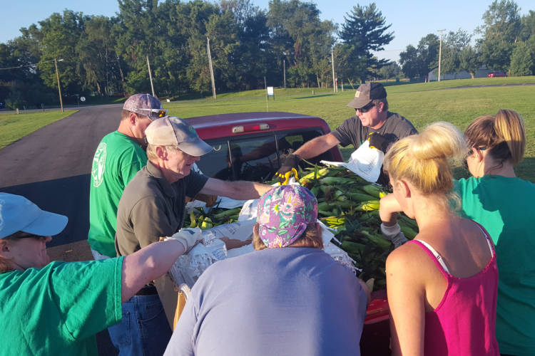 Sweet corn crop gets counted in Terre Haute. (Marsha Lynn Jackson, Ivy Tech)