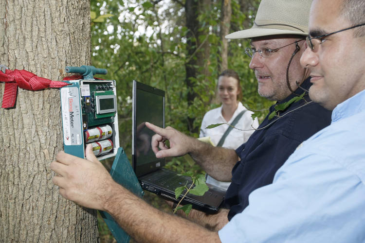 Purdue University ecologists collect data from recording equipment. (Purdue/Tom Campbell)