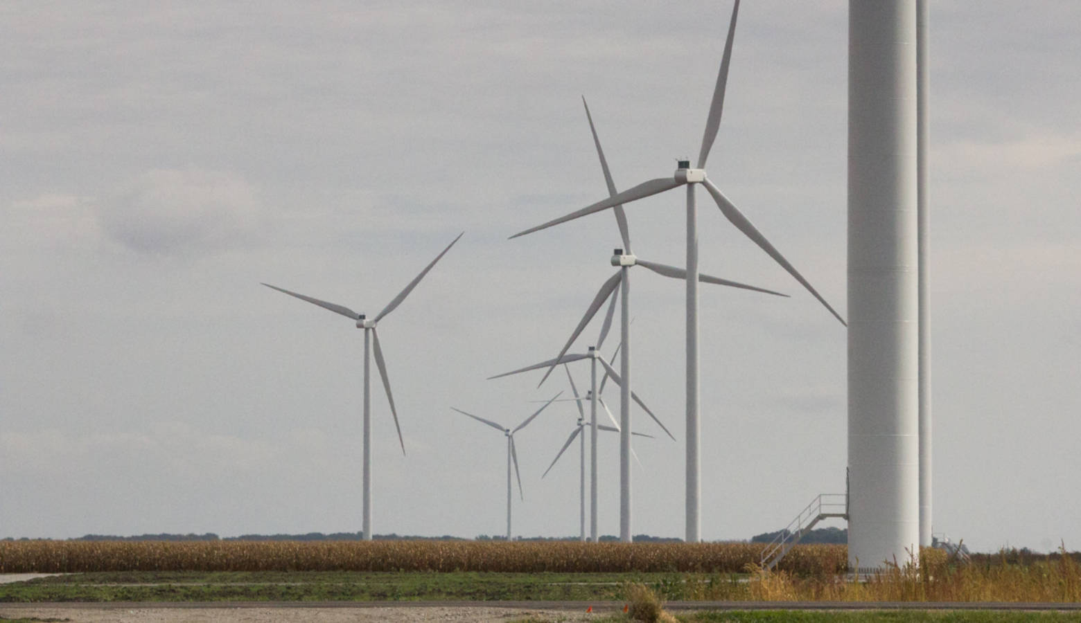 The Meadow Lake wind farm in White County (Annie Ropeik/IPB News)