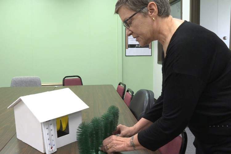 Monica Cannaley of the Hoosier Chapter of the Sierra Club uses a model to show how planting trees on the north side of your home can block wind and save on heating costs (Rebecca Thiele/IPB News)