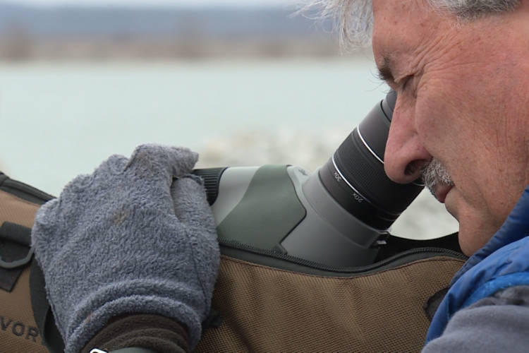 Jim Hengeveld uses a telescopic lens to count loons and other birds on Lake Monroe (Steve Burns/WTIU)