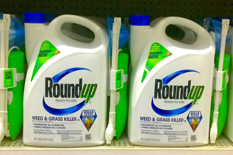 Roundup weed killer contains glyphosate (Mike Mozart, https://creativecommons.org/licenses/by/2.0/)