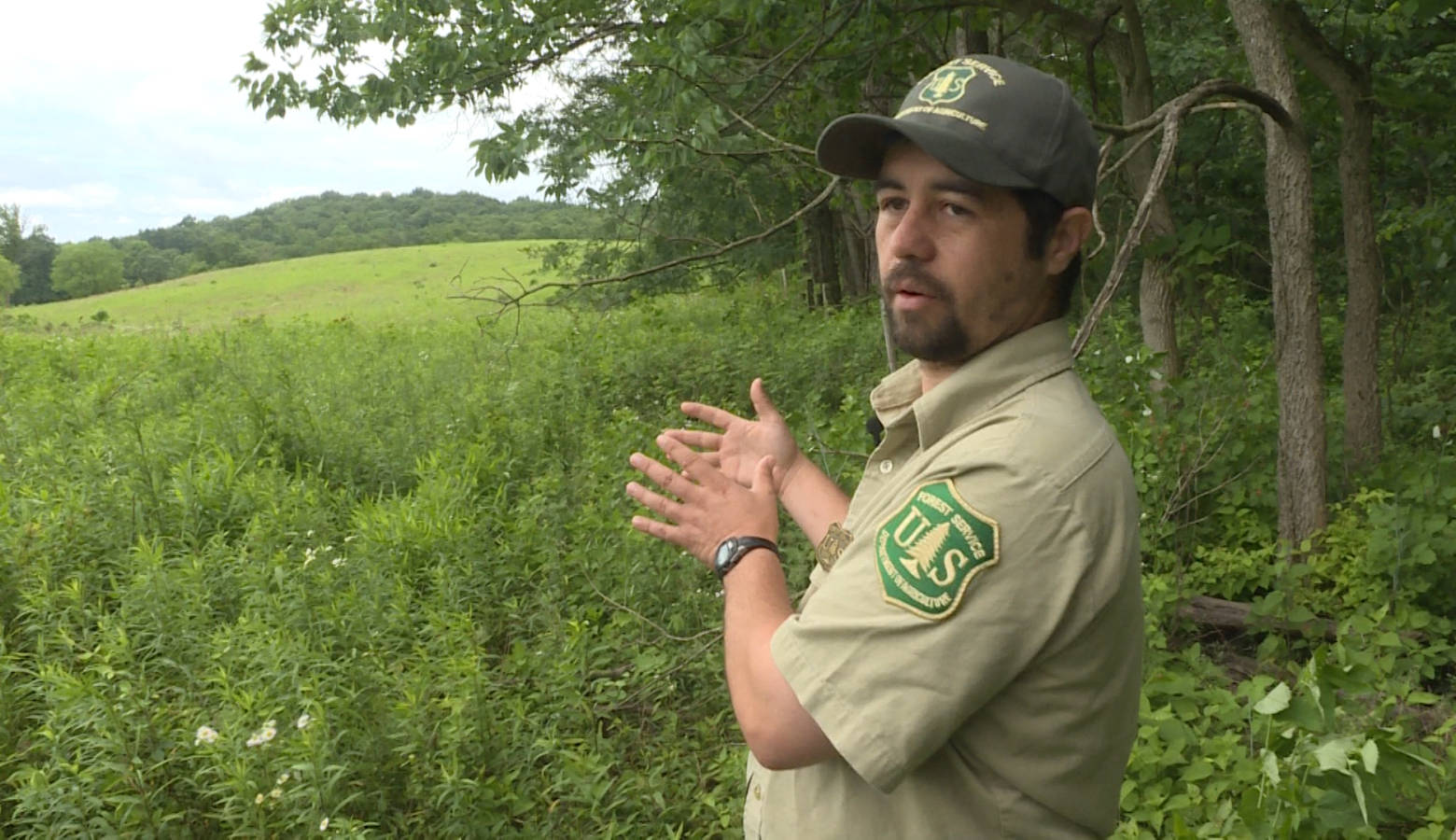 Hoosier National Forest Wildlife Technician Brian King gestures toward a forest opening the Forest Service has been managing to encourage diverse wildlife. (Rebecca Thiele/IPB News)