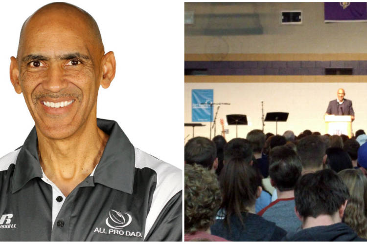 Dungy Collage