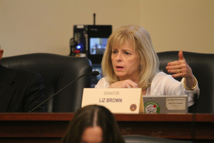 Sen. Liz Brown (R-Fort Wayne) emphasizes this year's fetal remains disposal bill imposes no new requirements on women. (Lauren Chapman/IPB News)