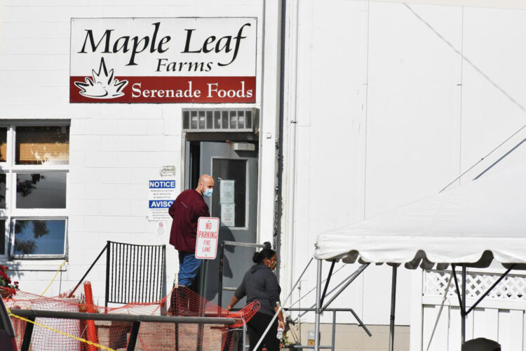 Workers at the Maple Leaf Farms poultry-processing plant in Milford, Indiana. (Justin Hicks/IPB News)