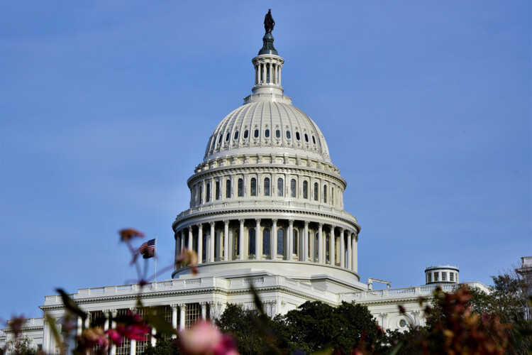 Congress passed a new round of direct relief – $600 per person – in December. (Justin Hicks/IPB News)