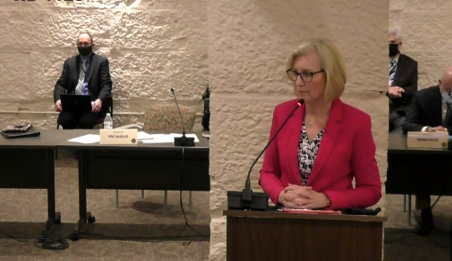 State Health Commissioner Dr. Kris Box testifies in a Senate committee hearing about the governor's emergency powers. (Screenshot of iga.in.gov)