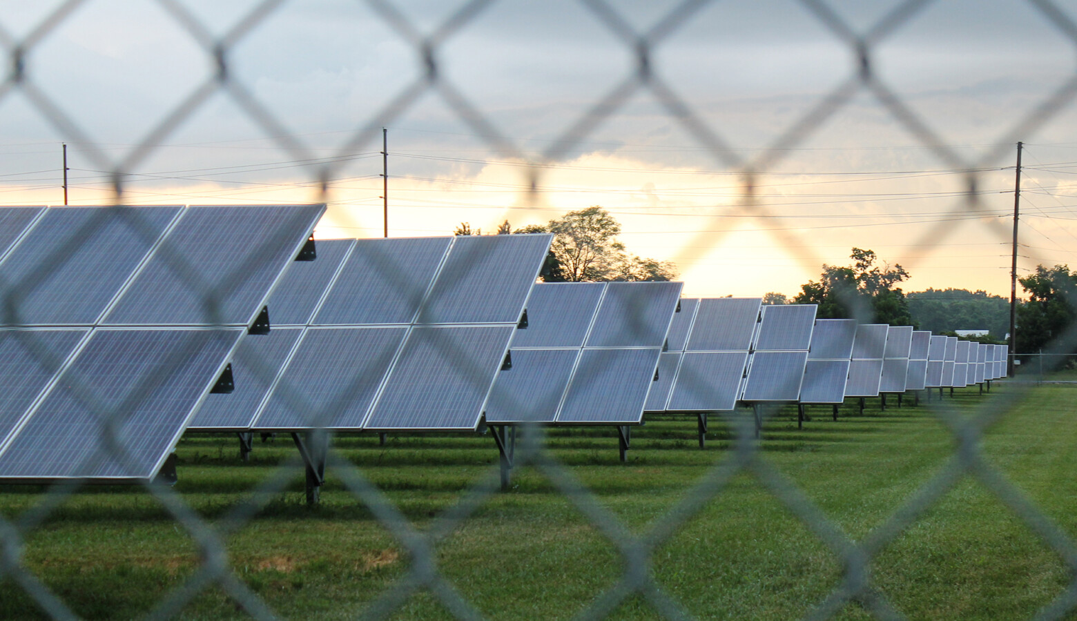 Indiana is expected to see the third highest increase in megawatts of large-scale solar in the country — with nearly four gigawatts, or 4,000 megawatts, proposed. (Lauren Chapman/IPB News)